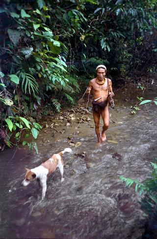 Šaman na lovu
