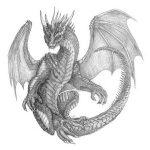 dragon-drawing-9