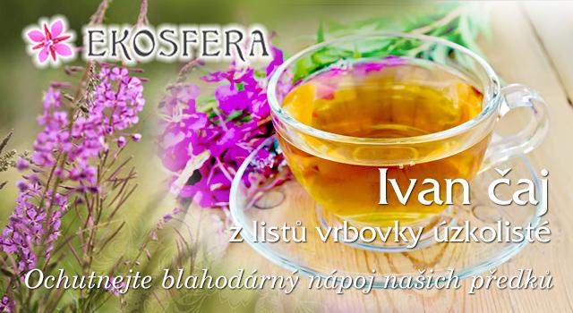 Ivan čaj z Vrbovky úzkolisté
