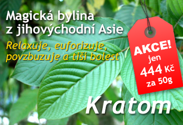 Kratom - magická byliny z Asie